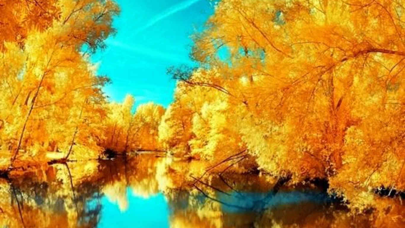 Autumn Reflection Background For You