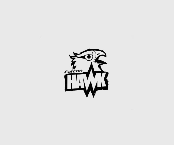 Awesome Falcon Hawk Logo