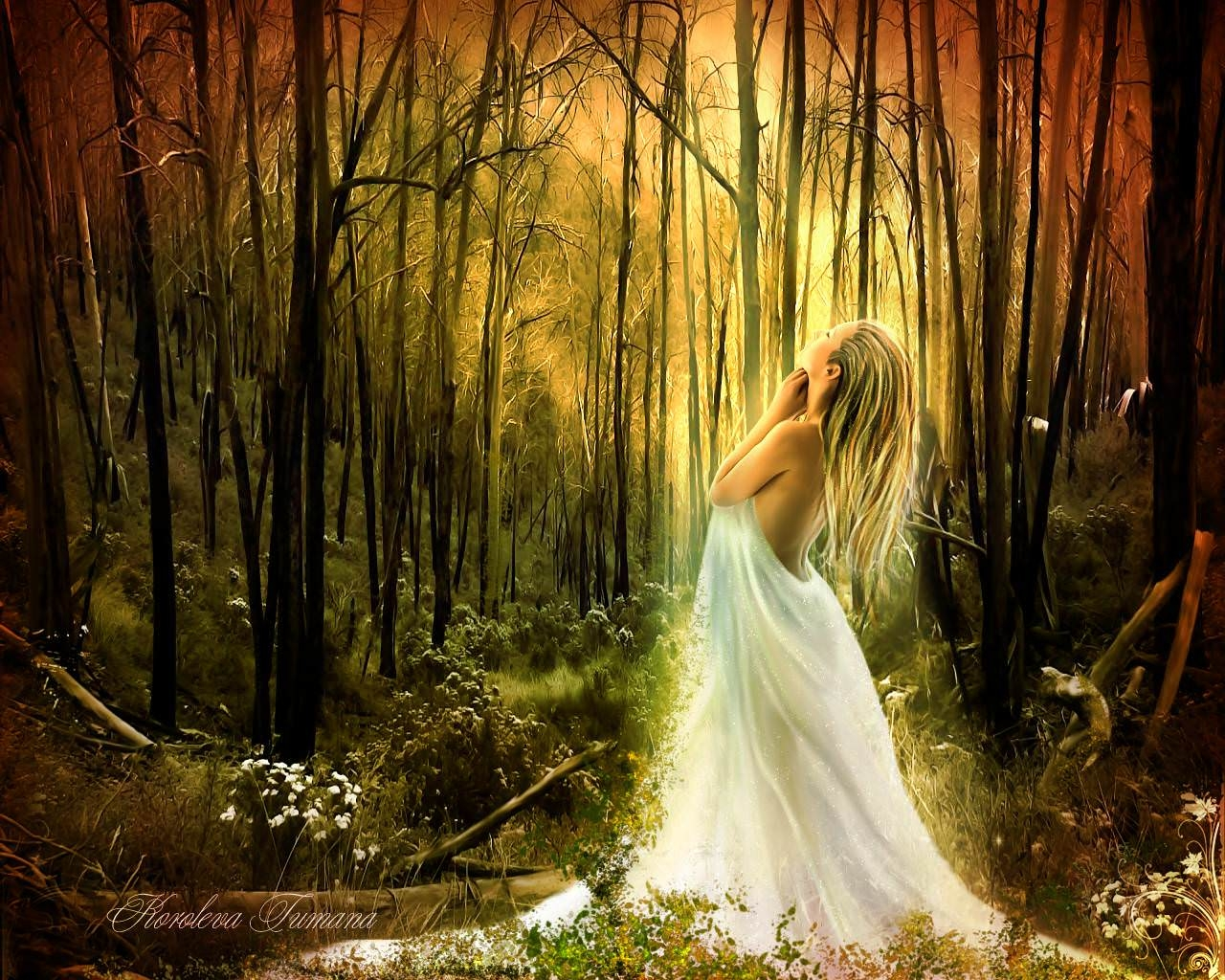 Beautiful Fairy in Forest Wallpaper