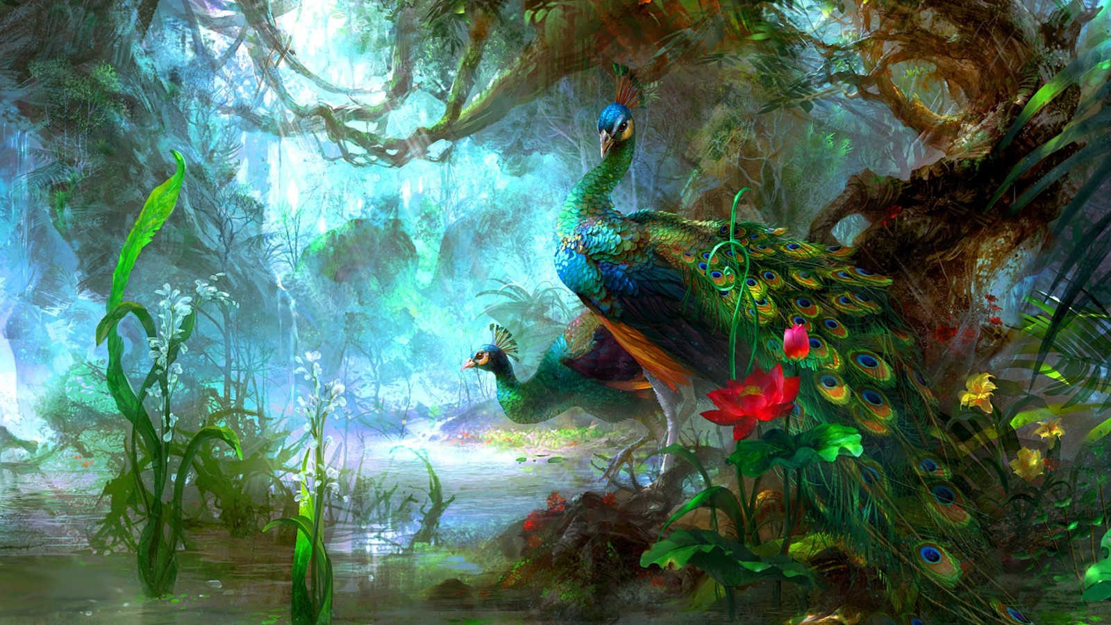 Beautiful Peacock Colorful Wallpaper