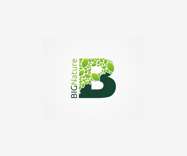 Big Nature Brand Fruit Logo