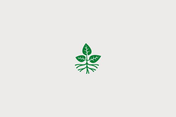 Bio Plant Logo Design