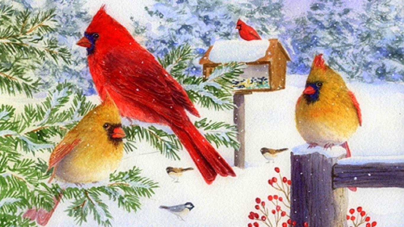 Cardinals In Snow Wallpaper