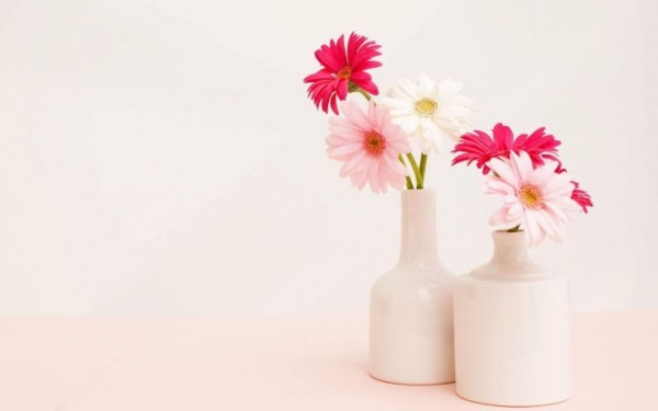 Cool Flower Vase Wallpaper