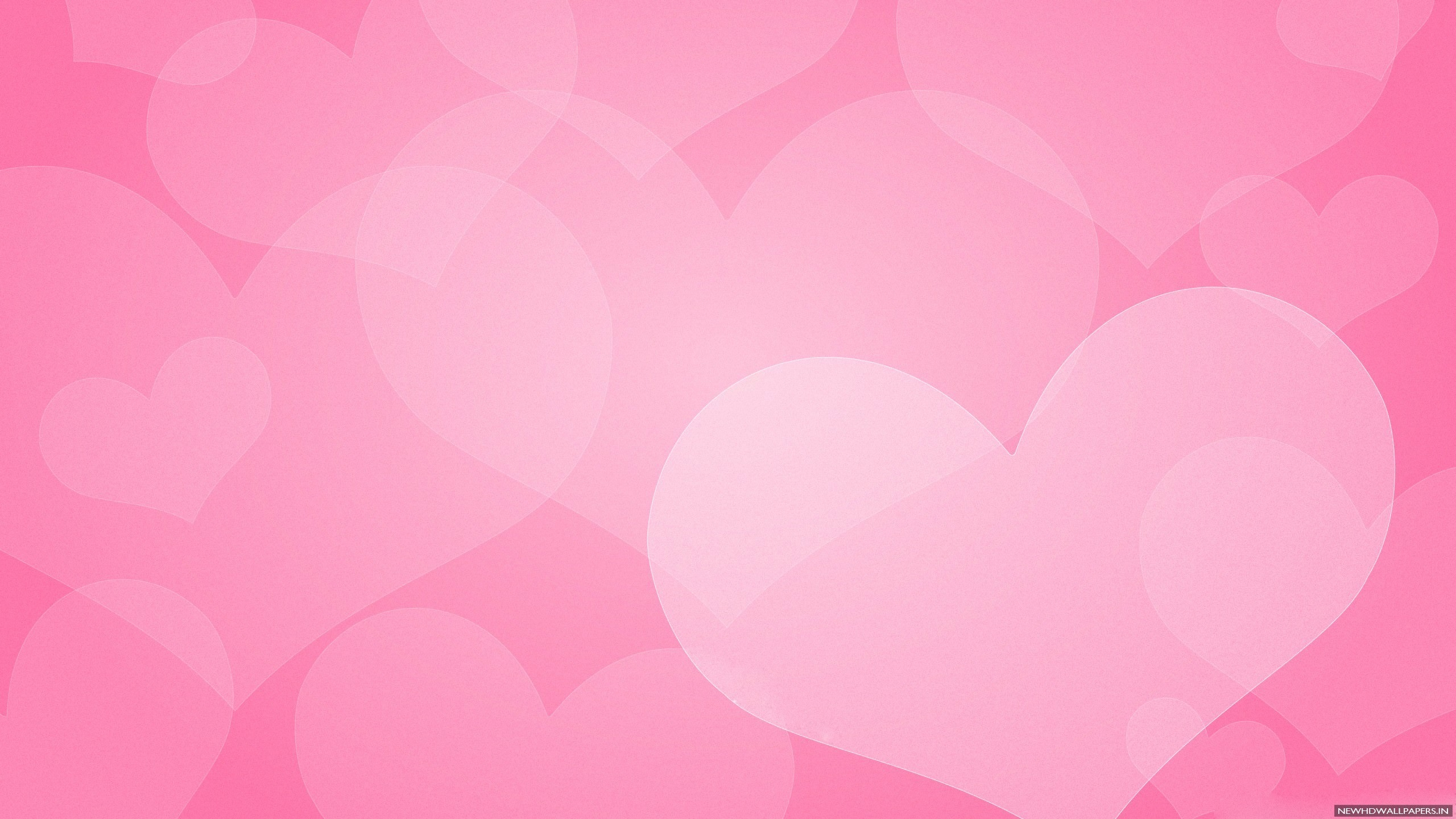 Cool Pink Plain Background