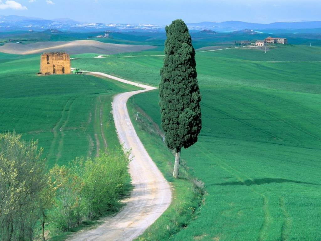 Country Road Tuscany Wallpaper