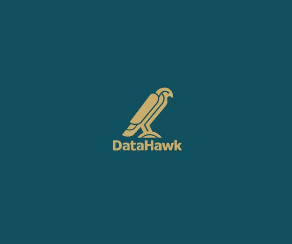 Data Space Link Hawk Logo