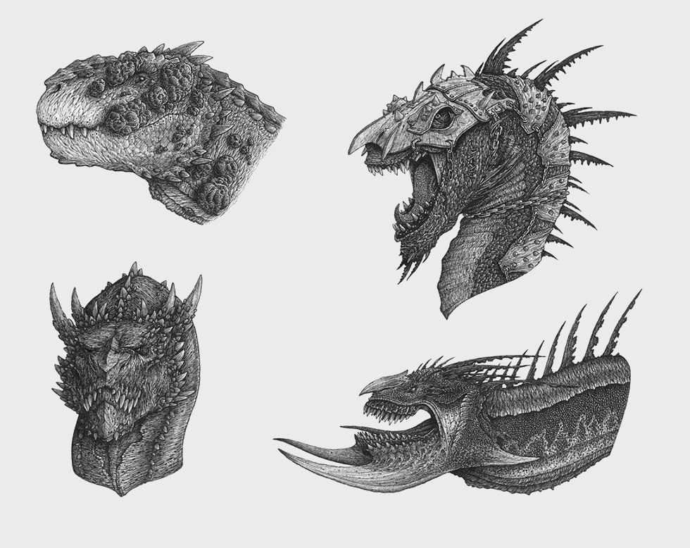 Different Dragon Heads Drawing
