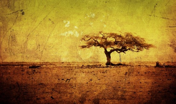 Download Artistic Grungy Wallpaper