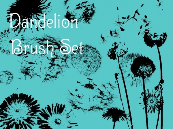 Download Dandelion Brush Set