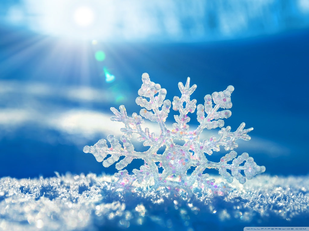 Download Snowflake Wallpaper