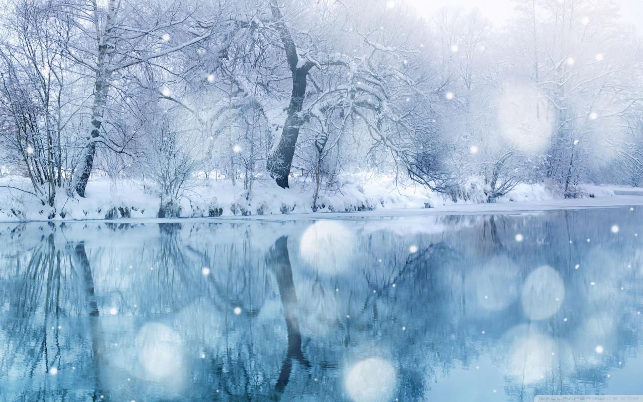 Download Winter Snowfall wallpaper
