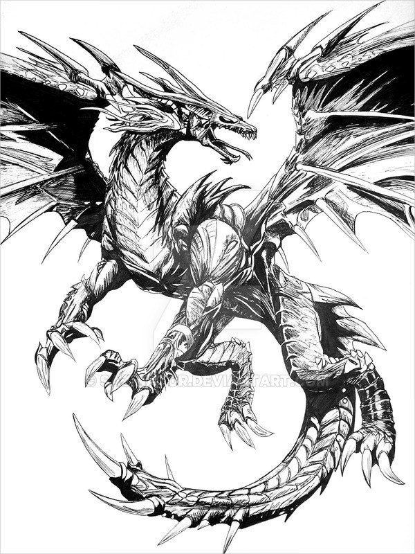 Dragon Drawing For Download