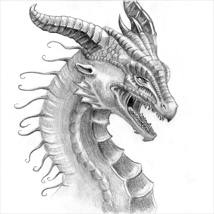 Dragon Face Drawing