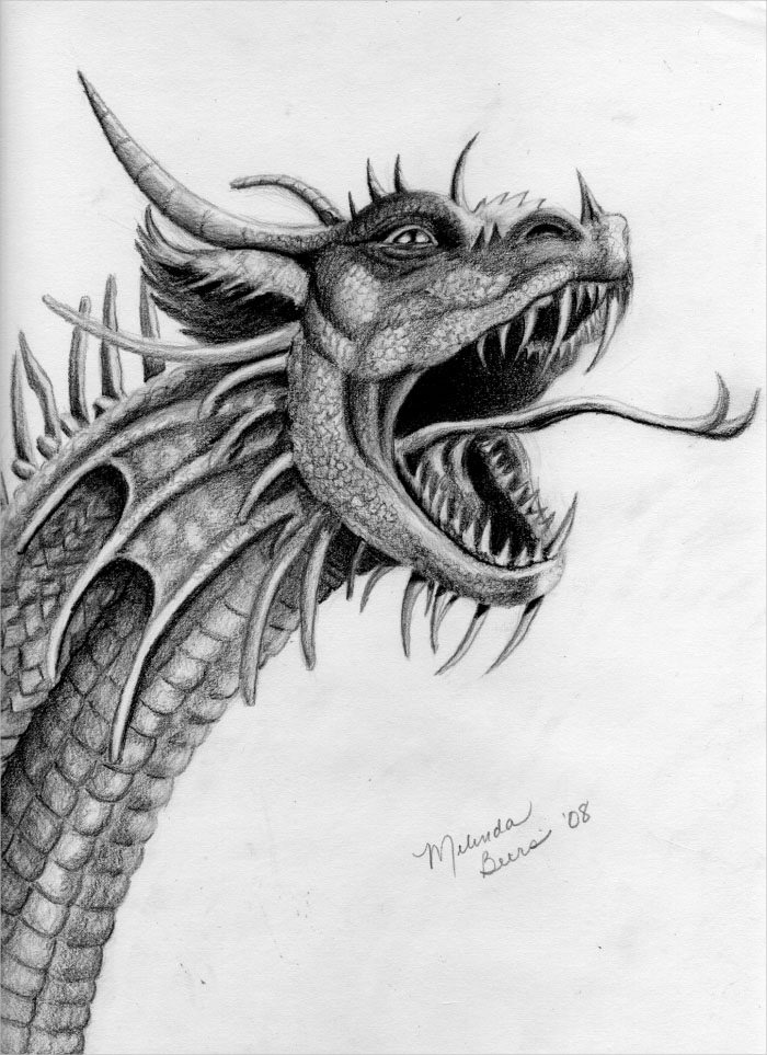 Dragon Roaring Drawing