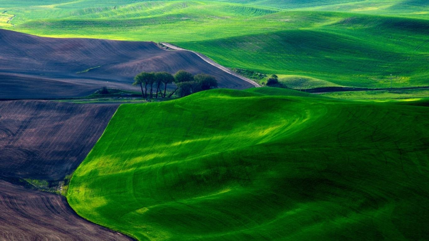 Dreamy Green Fields Mac Wallpaper