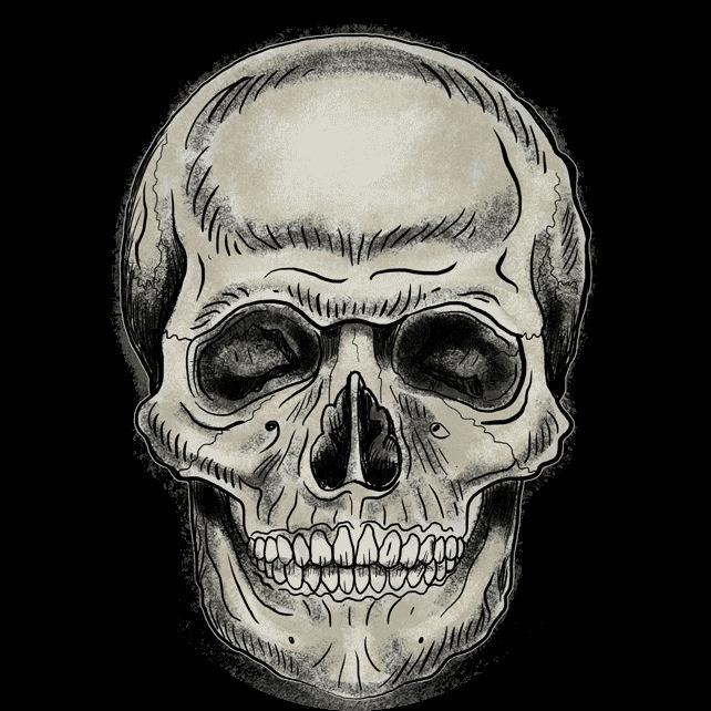 Elegant skull drawings