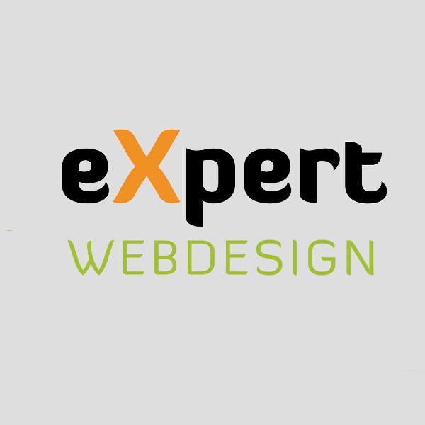Expert Web Design Logo