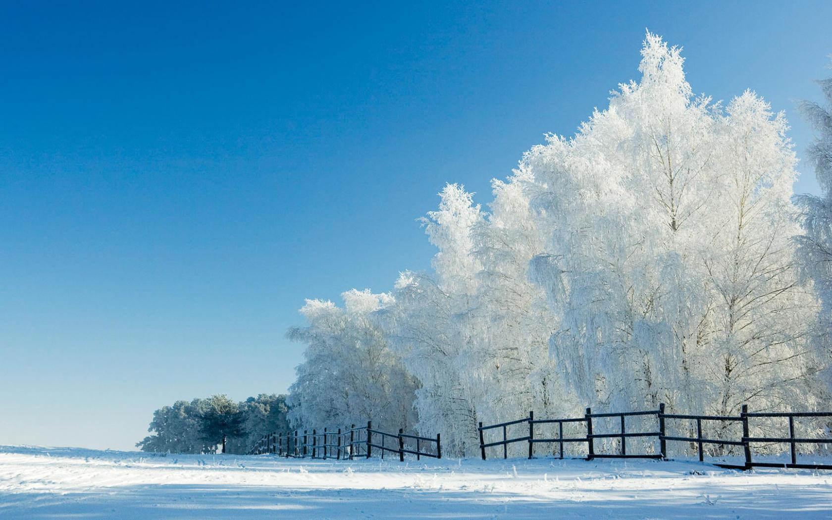 Extraordinary Snow Wallpaper