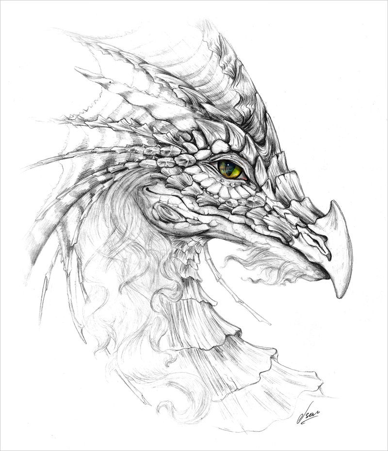 Eye of Dragon Drawing