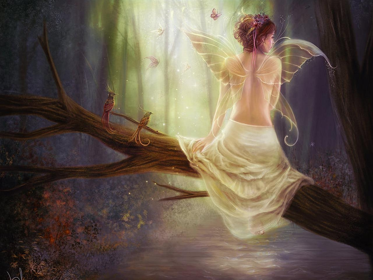 Fairy in Forest with Birds Wallpaper
