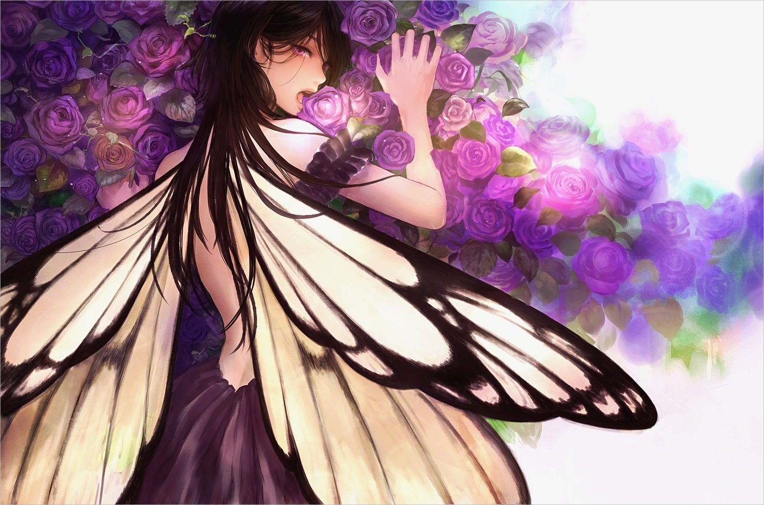 Fairy with Purple Roses Wallpaper