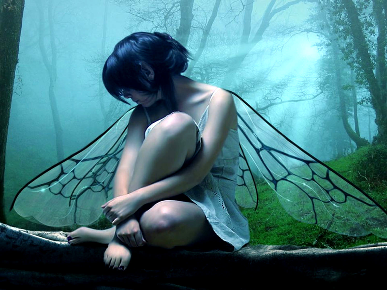Fantasy Fairy in Forest Wallpaper