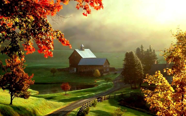 Farm Road HD Exquisite Wallpaper