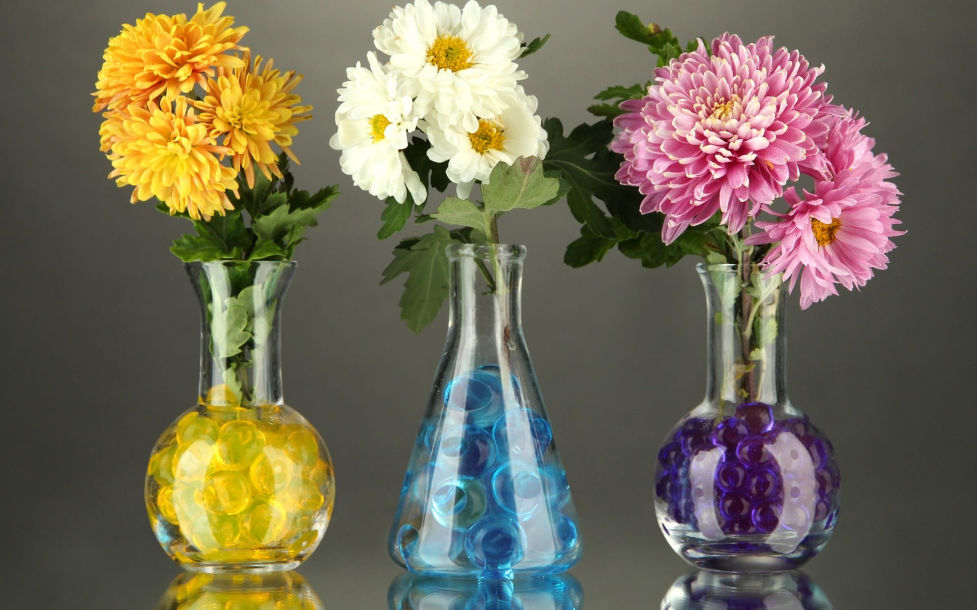 Flower Vase Widescreen Wallpaper