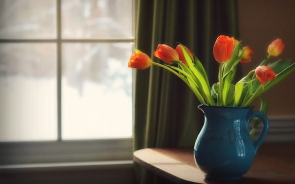 Flowers in Vase Home Decoration Wallpaper