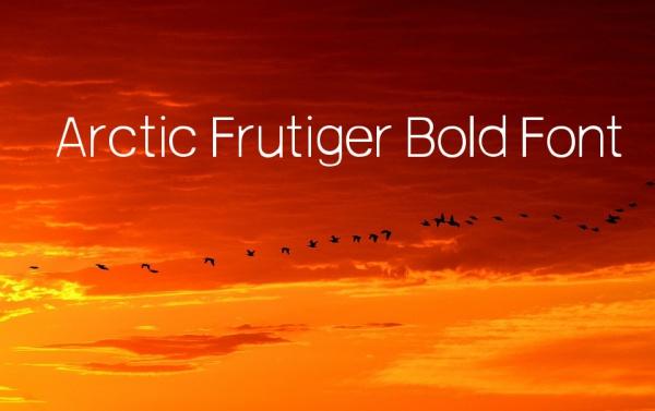 Free Arctic Frutiger Bold Font