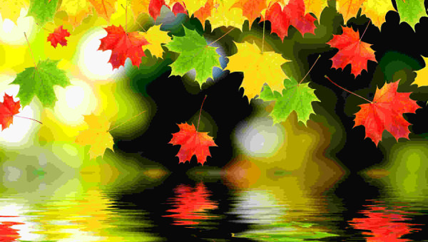 21 Autumn Backgrounds Fall Wallpapers Pictures Images
