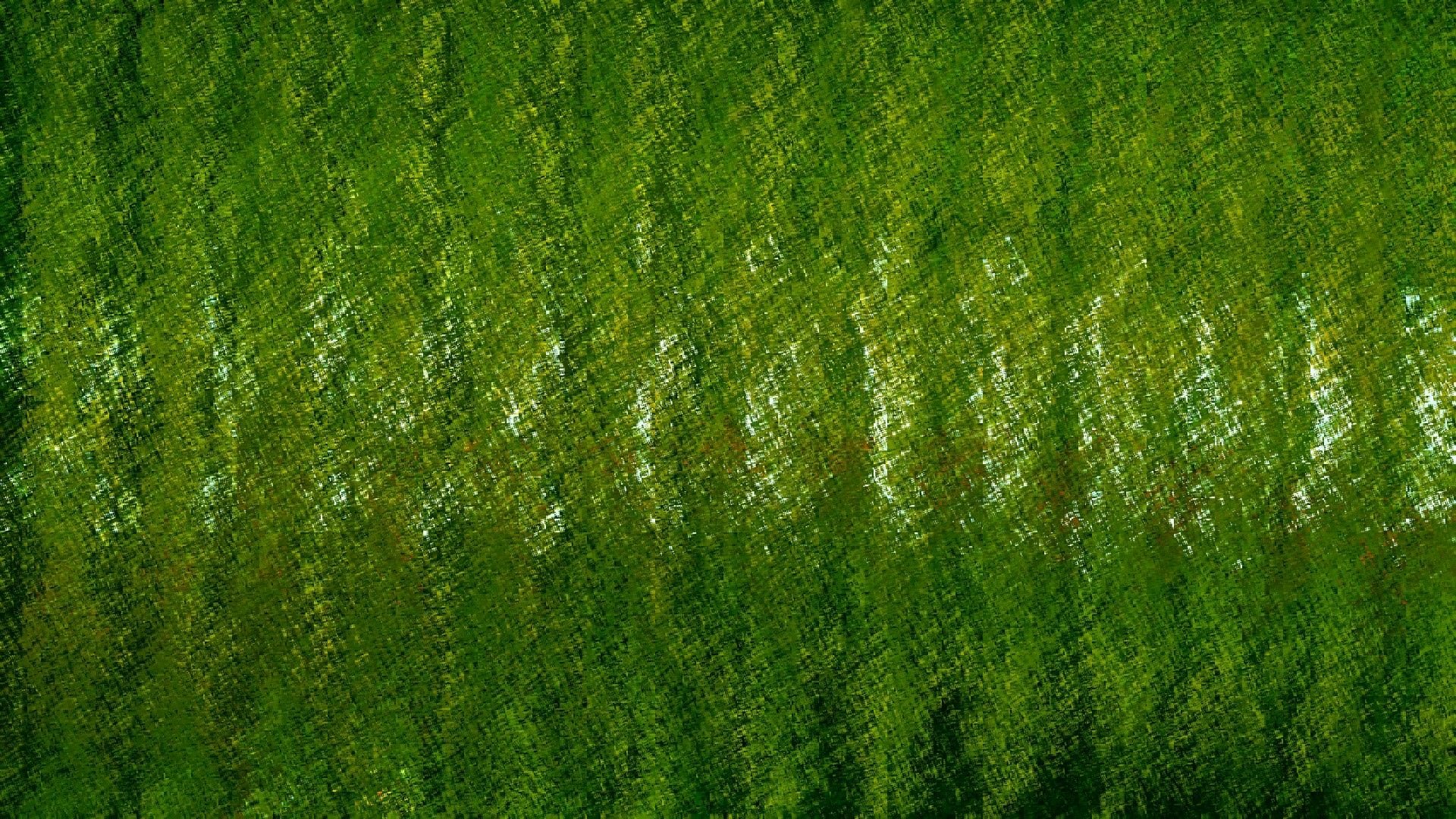 Green Textured Background For You