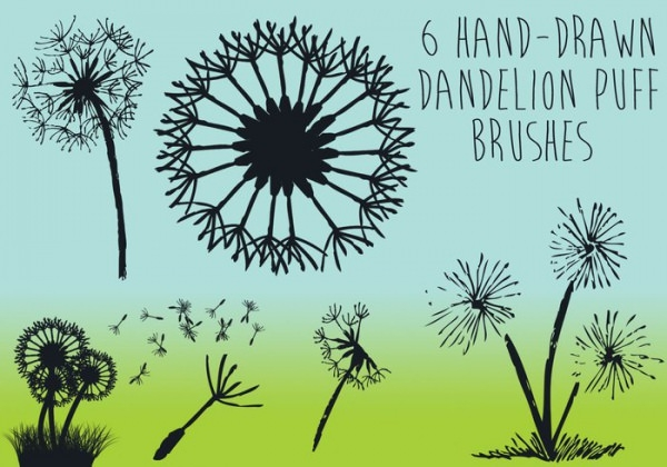 Hand drawn Dandelion Puff Brushes