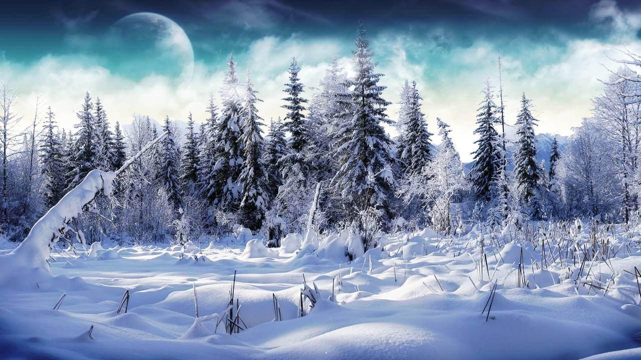 Heavy Snow HD Wallpaper