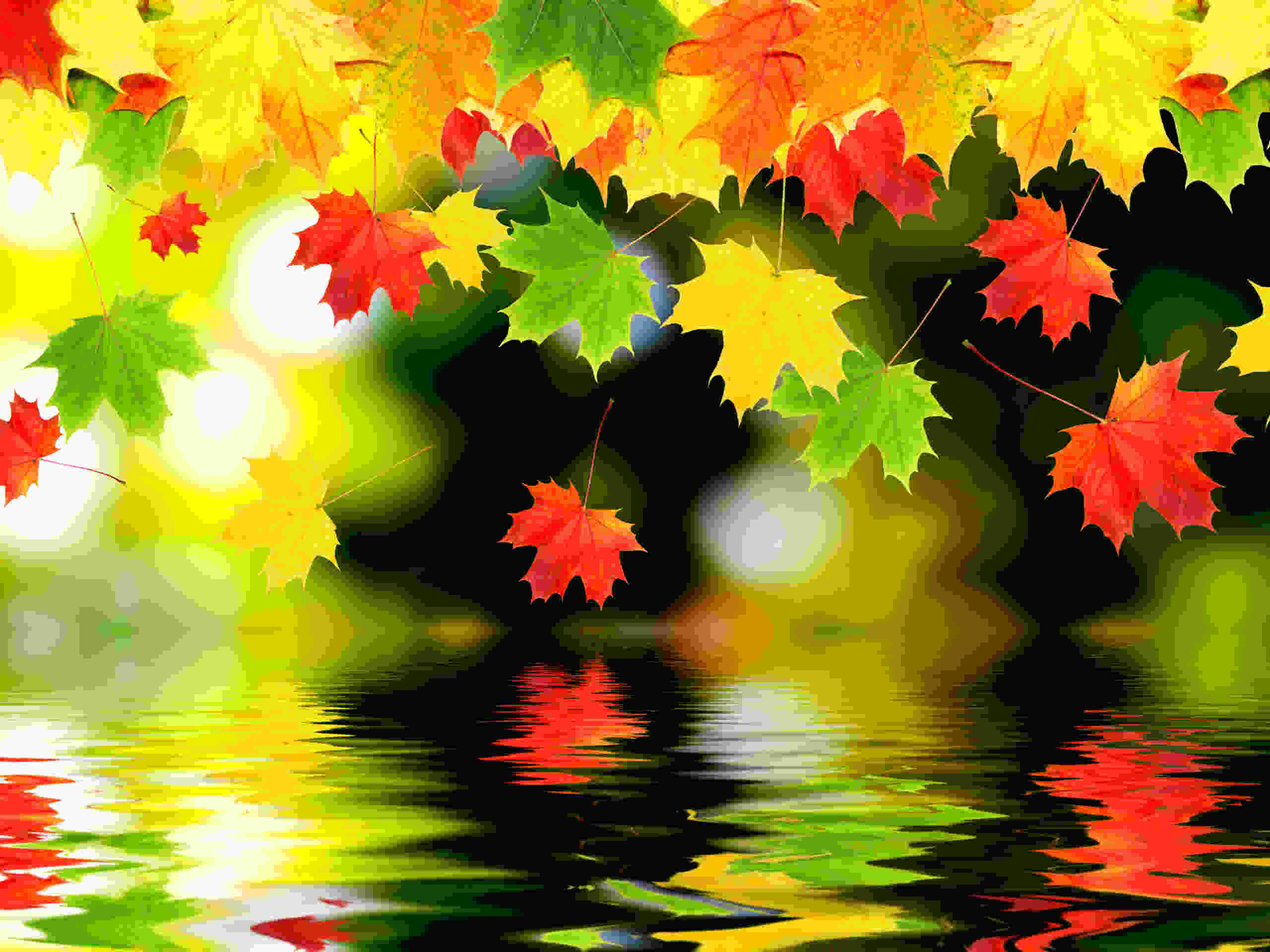 High Resolution Autumn  Background