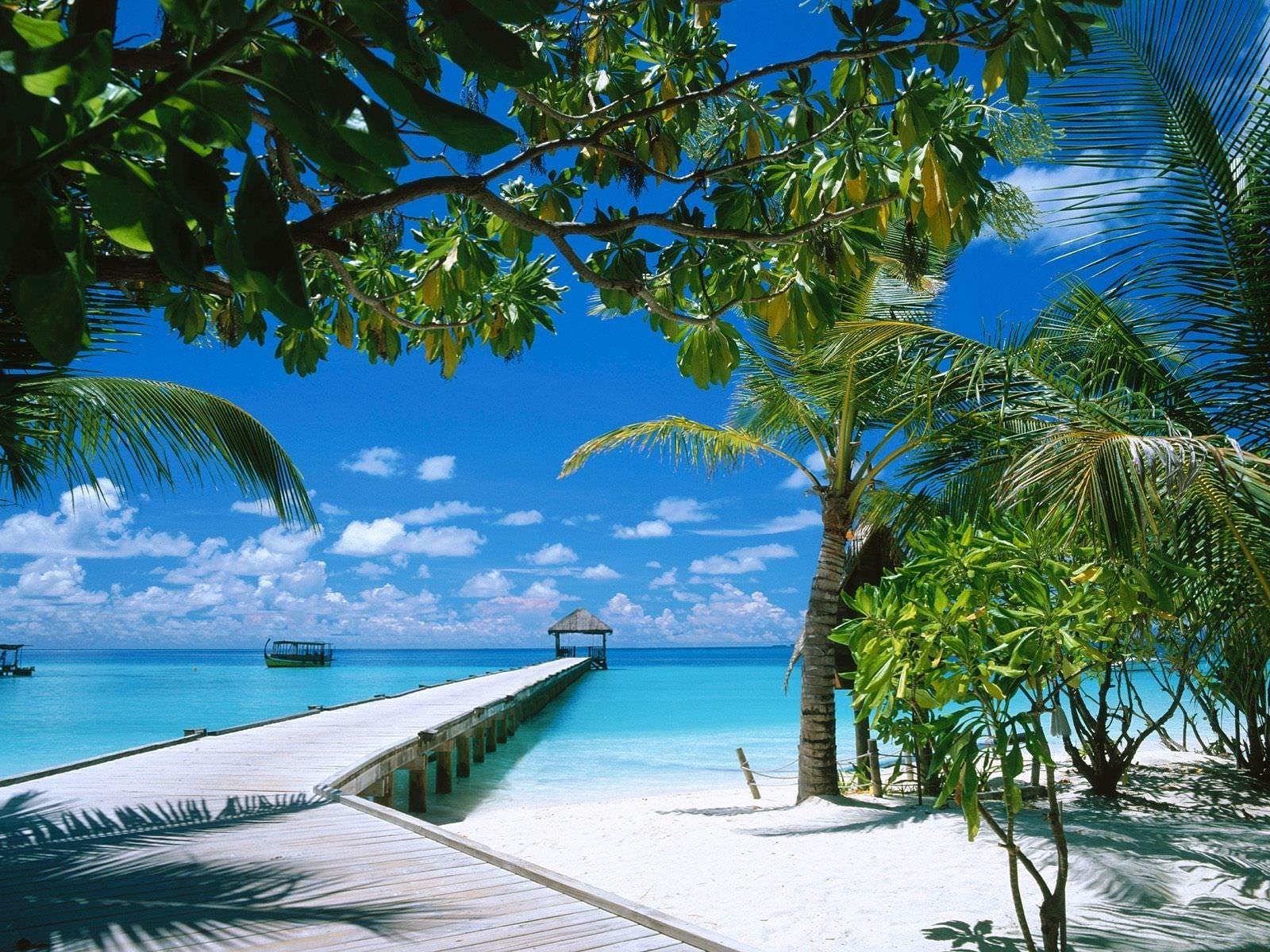 Long Way To Bay Tropical Island Wallpaper