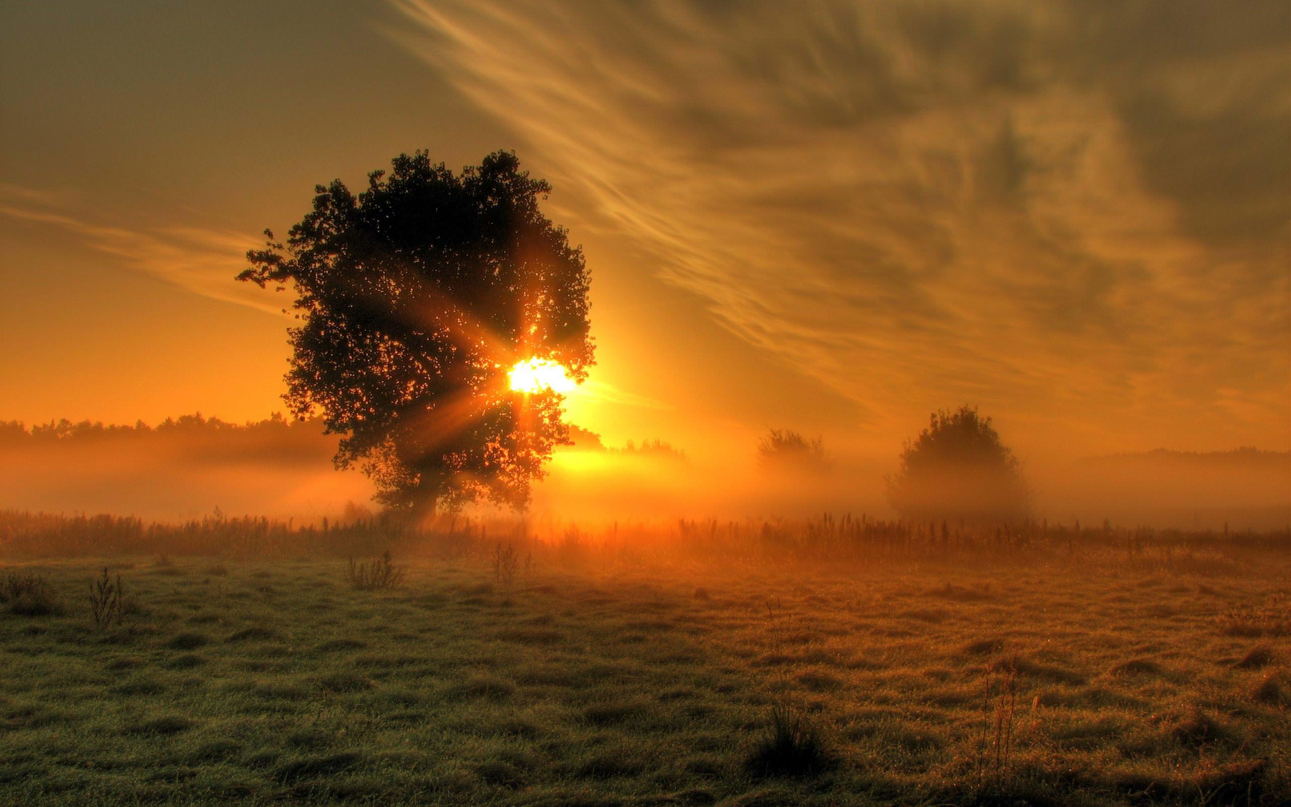 Lovely Sunrise Wallpaper For You