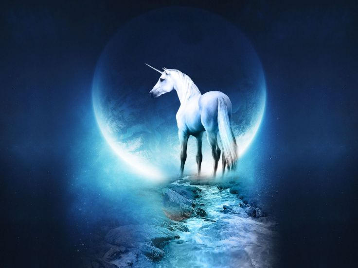 Magical Moon Unicorn Background