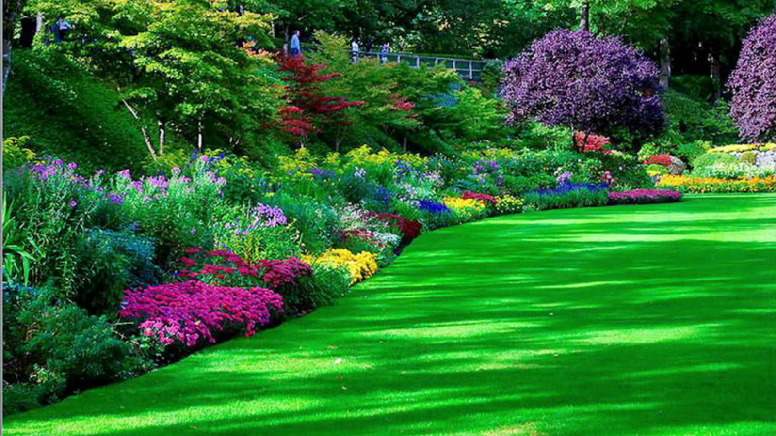 25+ Garden Wallpapers, Park, Nature, Backgrounds, Images ...