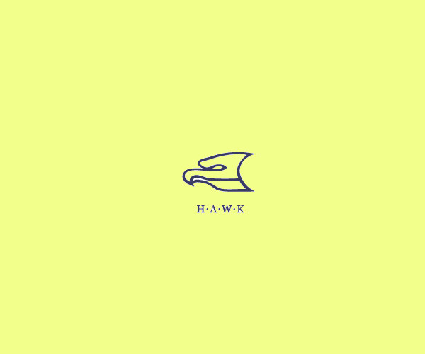 Modern Dynamic Hawk Logo