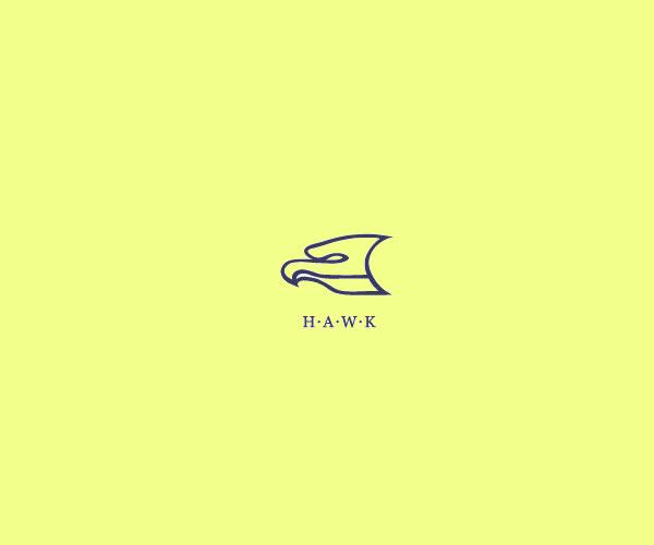 Modern Dynamic Hawk Logo