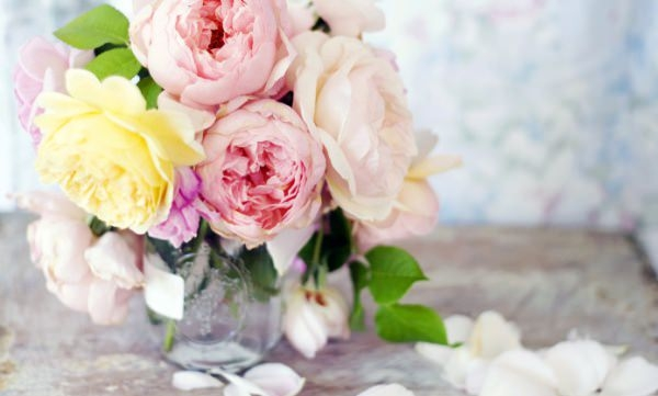 Rose Flower Vase Wallpaper