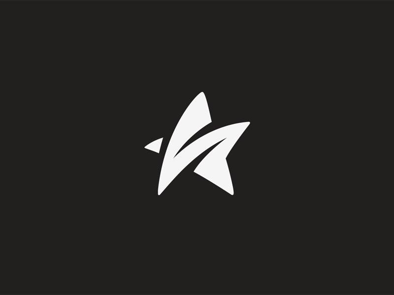 S Star Logo Design