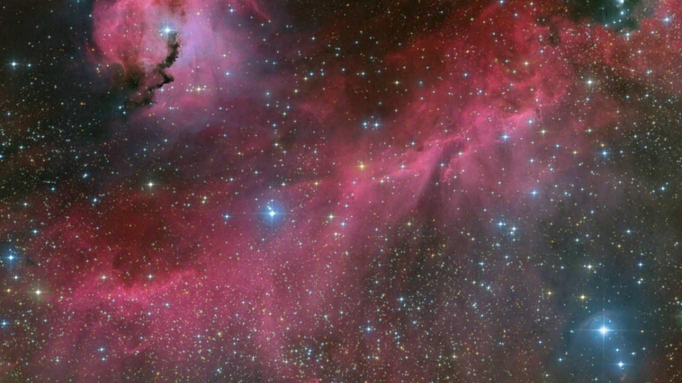 Seagull Nebula Wallpaper