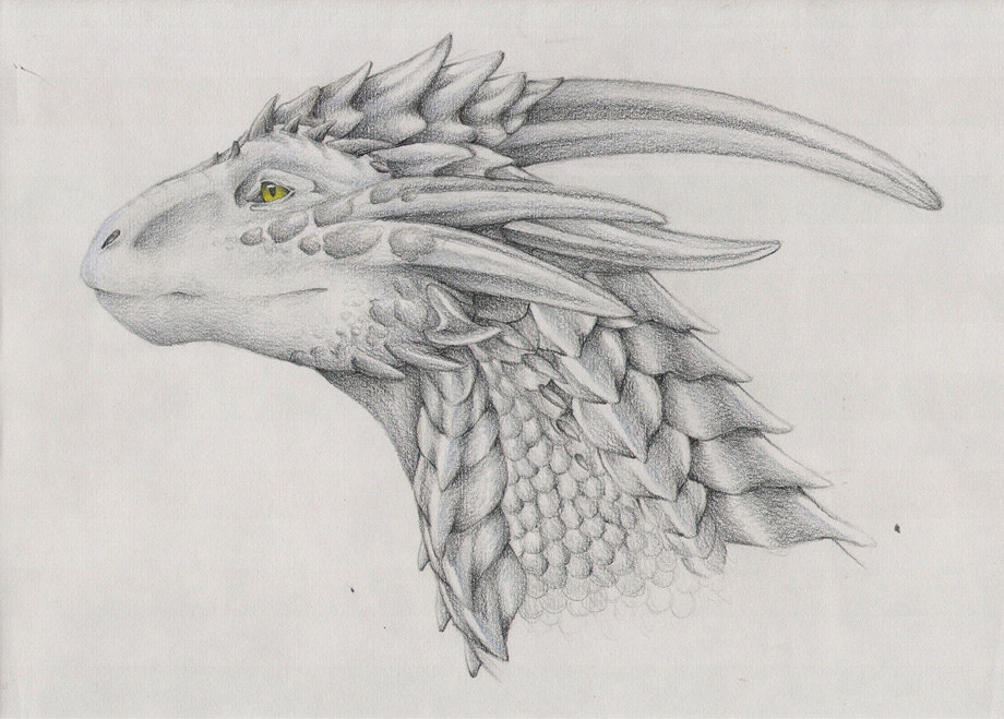Silver Dragon Drawing For Free
