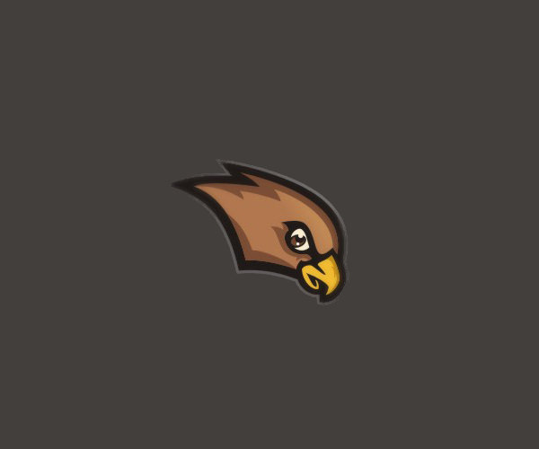 Sport Team Hawk Logo