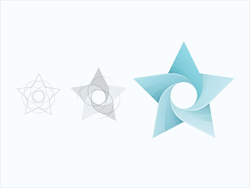 Star Logo Design For You