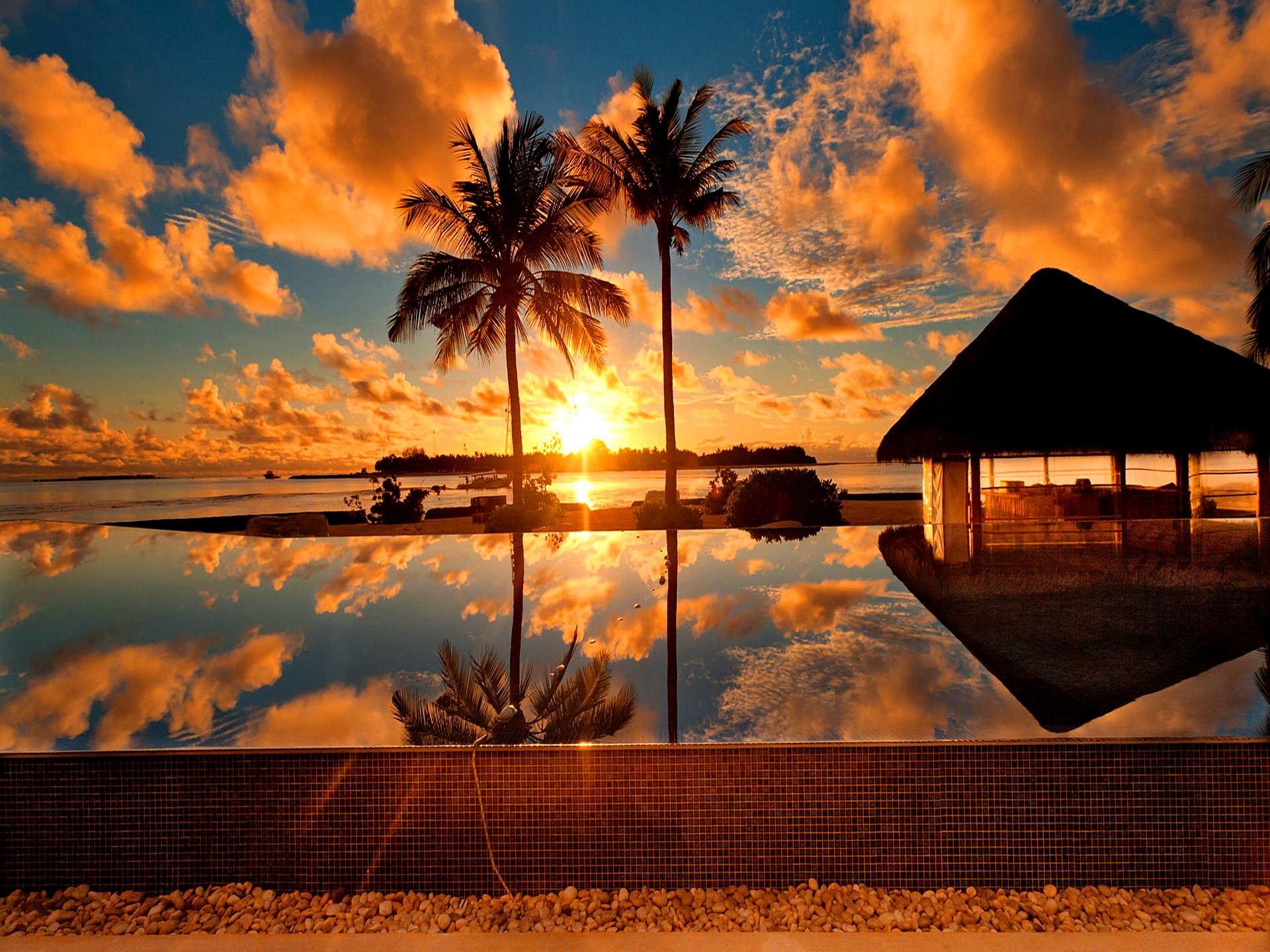 Sunrise Beach Tropical Wallpaper