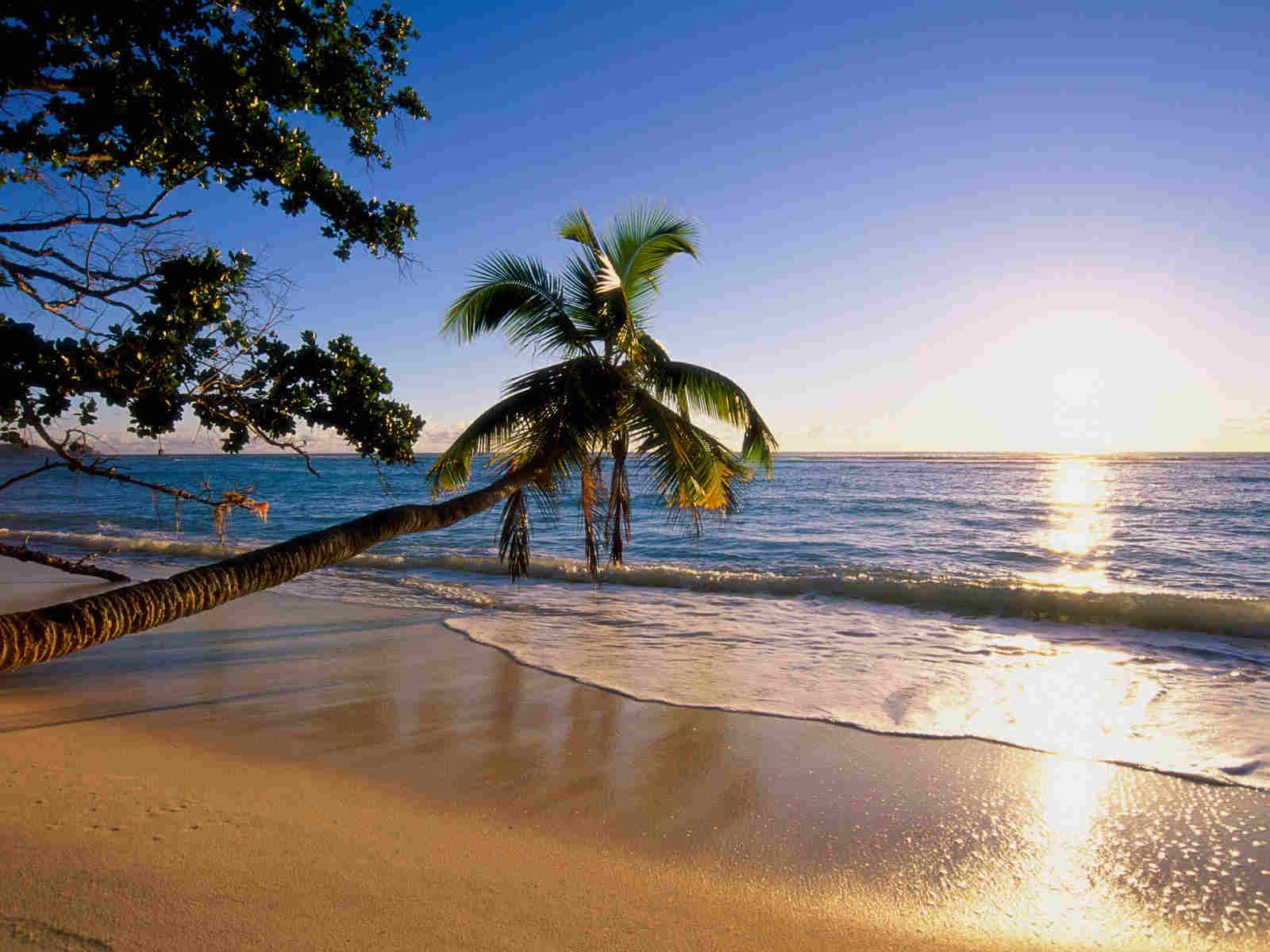 Sunrise Beach Wallpaper For You